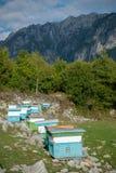 Case di ape nell'alta montagna Fotografia Stock Libera da Diritti