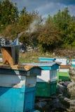 Case di ape nell'alta montagna Immagine Stock