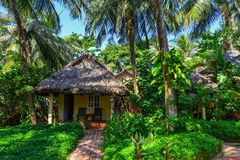 Case di estate con il giardino verde dell'albero immagini stock
