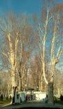 Case di inverno su Zrinjevac Fotografia Stock