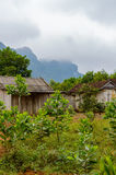 Case di legno dell'azienda agricola nel Vietnam rurale Fotografia Stock Libera da Diritti