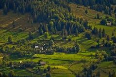 Case a distanza alte sulla montagna, foresta Immagini Stock Libere da Diritti