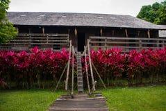 Case e cespugli di legno tradizionali di colore rosso Longhouse Kuching di Iban al villaggio della cultura di Sarawak malaysia Fotografia Stock Libera da Diritti