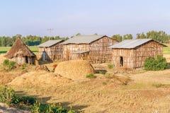 Case etiopiche nel villaggio Fotografie Stock Libere da Diritti