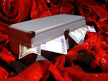 Case full of money Royalty Free Stock Photography
