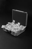 Case with a lot of money Royalty Free Stock Photos