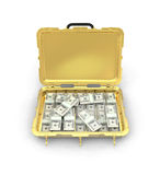 Case with the money Royalty Free Stock Image