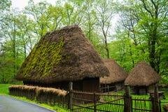 Case rumene tradizionali, museo del villaggio di Astra Ethnographic, Sibiu, Romania Fotografia Stock Libera da Diritti