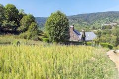 Case rurali Fotografia Stock