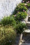 Case rurali in Algarbe Fotografia Stock