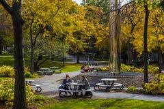 Case Western Reserve University - Cleveland, Ohio Stock Images