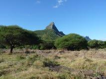 Casela Nature Park Stock Photo