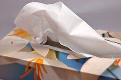 Casella dei tessuti Immagini Stock