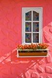 Casella del fiore e della finestra Immagine Stock Libera da Diritti