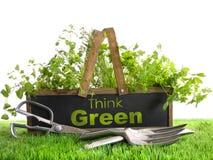 Casella del giardino con l'assortimento delle erbe e degli strumenti Fotografia Stock Libera da Diritti