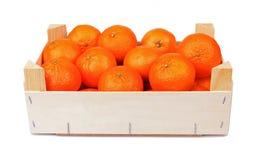 Casella delle clementine Immagine Stock Libera da Diritti