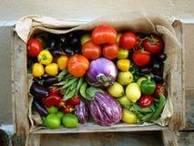 Casella delle verdure fotografie stock