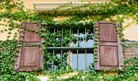 Casella di finestra di legno con lo scalatore Fotografia Stock Libera da Diritti