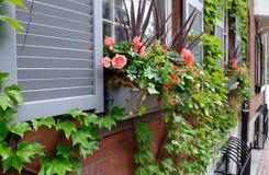 Casella di finestra nello stile Fotografie Stock