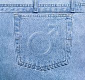 Casella maschile dei jeans Immagini Stock Libere da Diritti