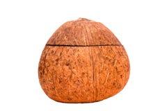 Casella sotto forma di la noce di cocco Immagine Stock Libera da Diritti