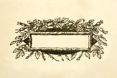 Casella titolo vittoriana floreale in bianco immagini stock