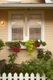 Caselle della piantatrice con i fiori sotto la finestra Immagine Stock Libera da Diritti
