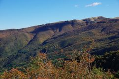 Casentino and Appennines from Pratomagno, autum foliage. Stock Photography