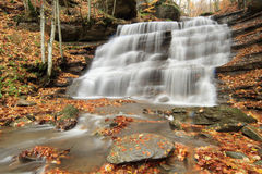 Casentino Italian forest waterfalls Royalty Free Stock Images