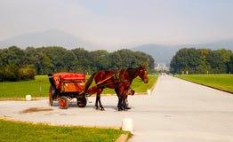 Caserta Gardens tour with horse carriage Royalty Free Stock Photos