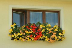 Three-piece wooden euro-window / plastic window and boxes with yellow and red begonia. Cases with yellow and red begonia on window in summer royalty free stock photo