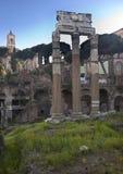 casesar kwiatów forum Italy Julius Rome wiosna Obraz Stock