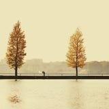 Casese nuevamente los pares que se colocan en un puente Fotos de archivo libres de regalías