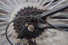 Casete y cadena del ciclo Foto de archivo
