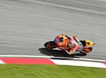 Casey Stoner Royalty Free Stock Photography