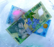 Cash....(2). Here are some Romanian money in ICE. Here are CASH money Royalty Free Stock Photography