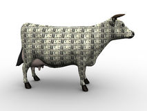 Cash Cow Stock Photos
