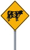 Cash Cow Ahead Stock Photos