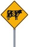 Cash Cow Ahead. A conceptual road sign indicating a cash cow ahead vector illustration