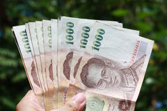 Cash on green background. Hand holding thousand baht banknotes on greenery background Stock Photos