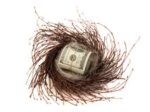 Cash in nest egg Royalty Free Stock Photography