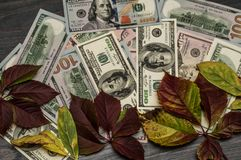 Background from cash, one hundred dollar denominations. From cash, one hundred dollar denominations Stock Photography