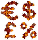 Cash symbols fall leaf composition isolated Stock Image
