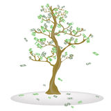 Cash Tree. Royalty Free Stock Photo