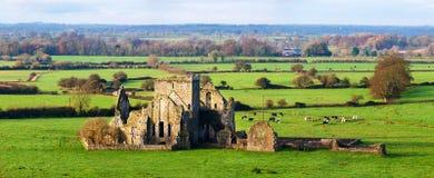 Cashel,爱尔兰 Hore修道院的废墟全景  免版税图库摄影