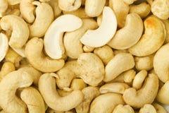 cashew Royaltyfria Bilder