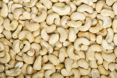 cashew arkivfoton