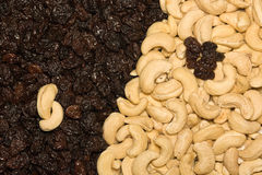 Cashew and black raisins Royalty Free Stock Photos