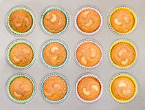 Cashew Cupcakes in Baking Tray Royalty Free Stock Photography