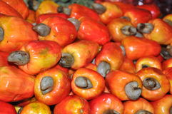 Cashew Fruit. Sold at street market royalty free stock photos